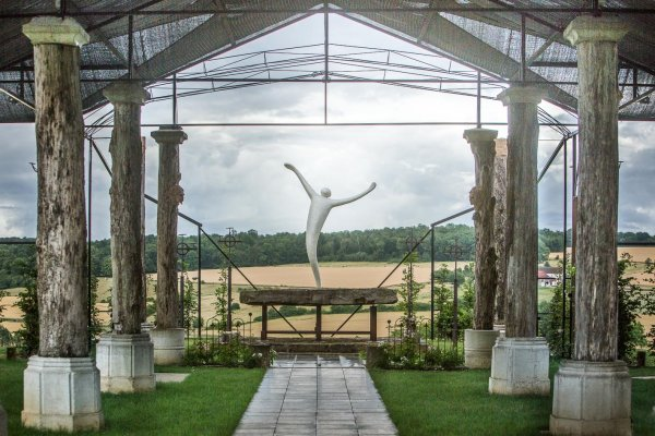 L'Envol dans la cathédrale végétale du Point du Jour - Verdelot 77