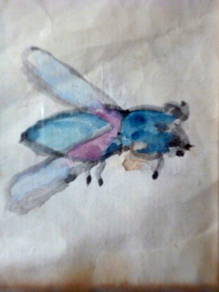 Ma première oeuvre, la mouche