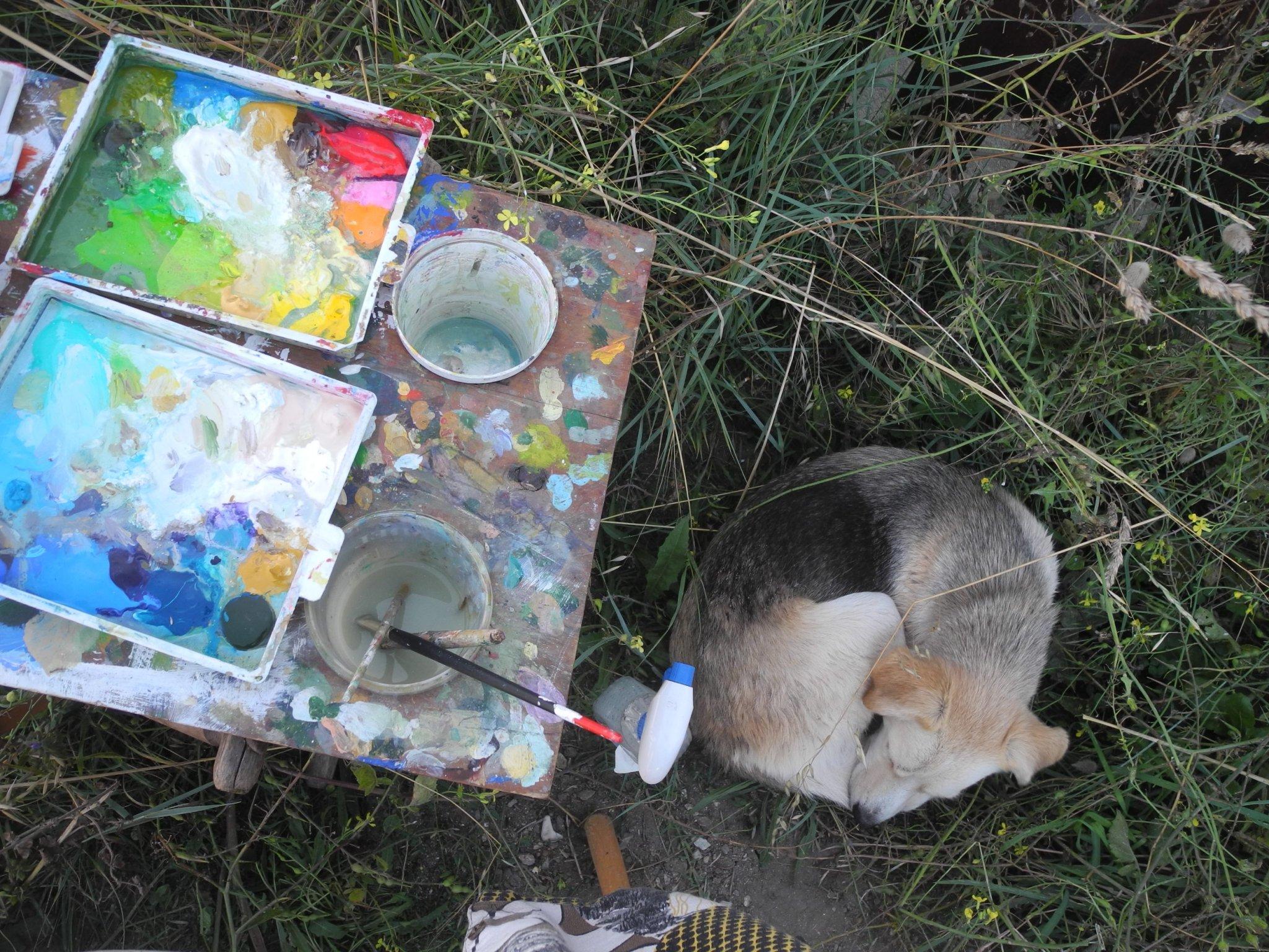 Liens sociaux en mon art : les gamins et les animaux