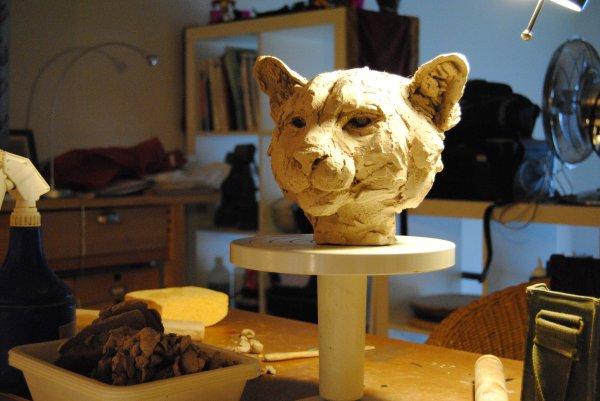 Tête de Puma dans mon atelier à domicile