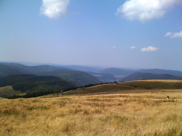 Montagne Vosgienne